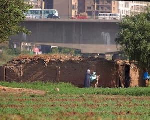 www.d-p-h.info/images/photos/8033_egypt2.jpg