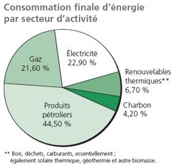 Consommation finale d'énergie par secteur d'activité
