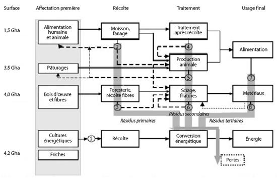 Vue d'ensemble des synergies et conflits d'usage entre les différentes filières de biomasse et les surfaces terrestres disponibles